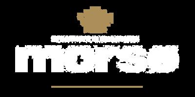 fabricant-poele-morso